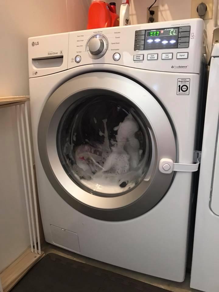 lavatricja