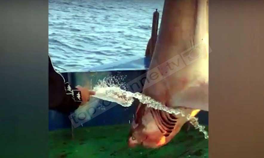 peshkaqeni