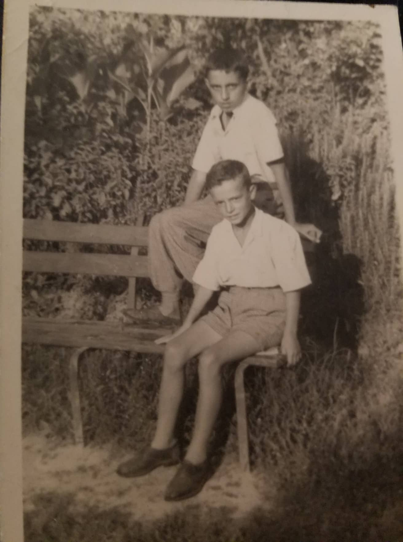 Me shokun e femirise Kosta Guvelin(Saver)