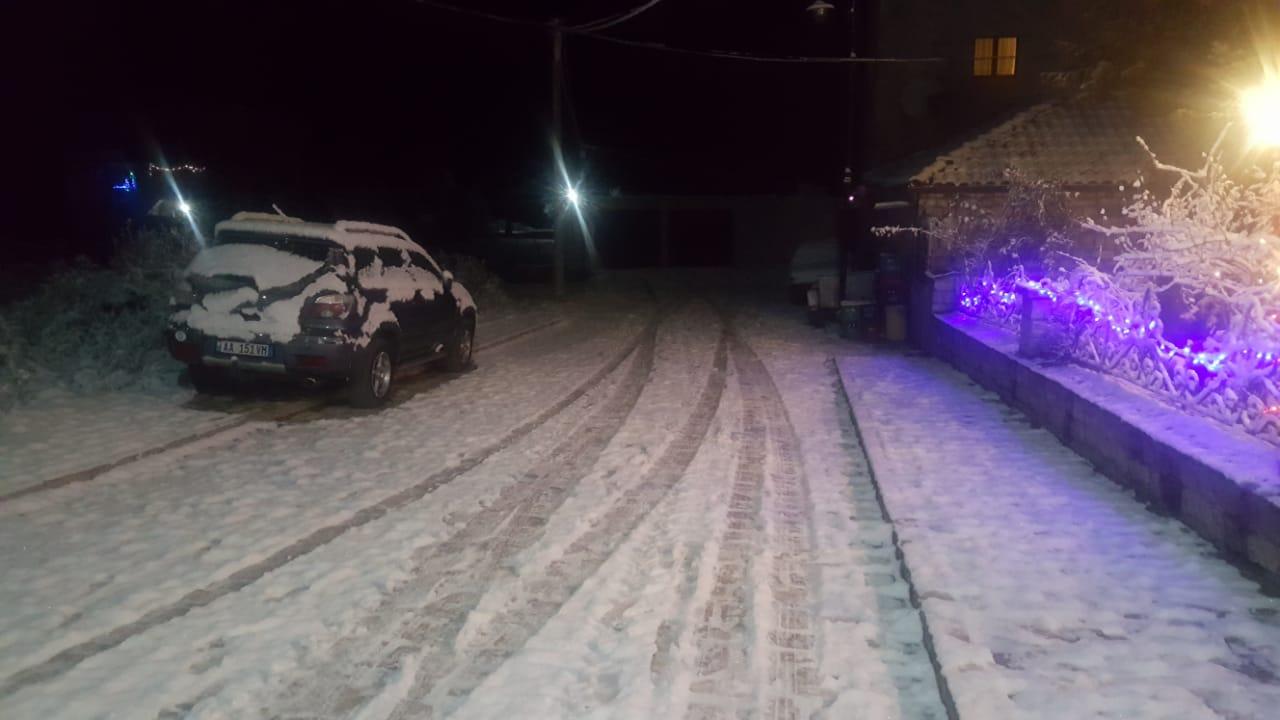 Reshje bore1