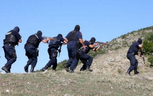 FNSH aksion në Lezhë, goditet një bandë kriminale